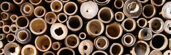 parquet bambou les tapes de fabrication blog ecoligne bambou toutes l 39 actualit des. Black Bedroom Furniture Sets. Home Design Ideas