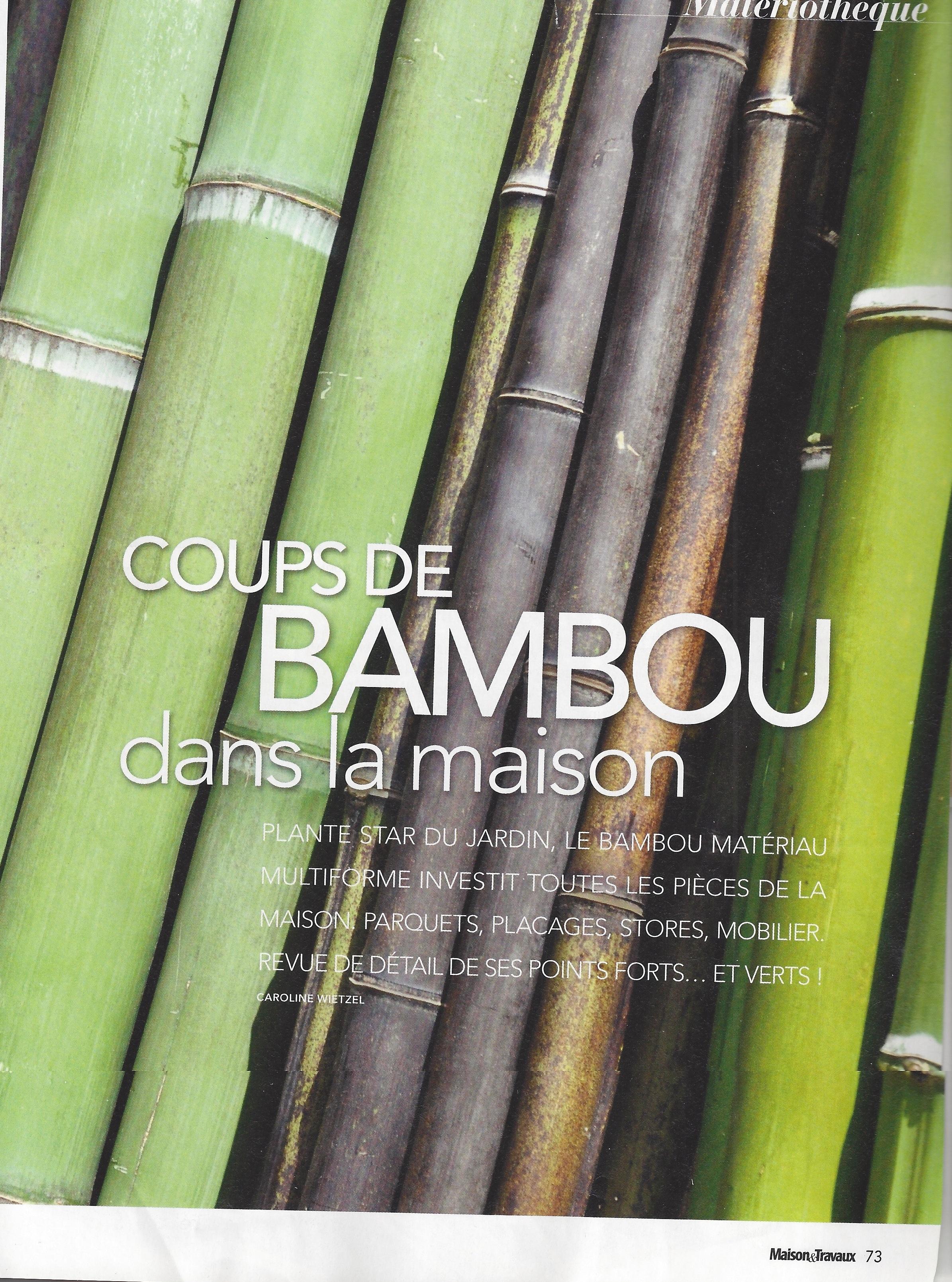 maison travaux blog ecoligne bambou toutes l. Black Bedroom Furniture Sets. Home Design Ideas